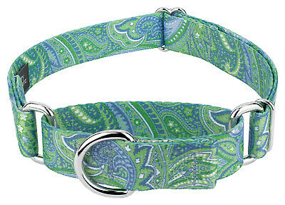 Country Brook Petz® Martingale Dog Collar - Paisley Collection