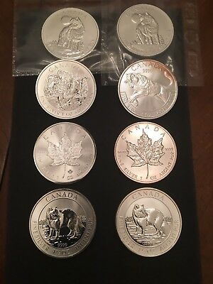 Nine Ounces Of Canadian Silver Dollars .9999
