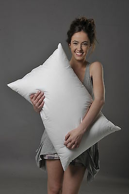 Standard Soft Pillow 70% White Hungarian Goose Down, Better Than Hotel Quality