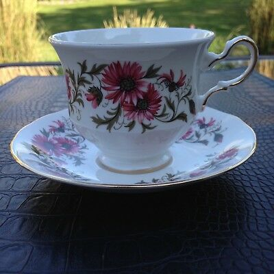 "Royal Vale (Colclough) ""Mums"" English china teacup and saucer REDUCED SHIPPING"
