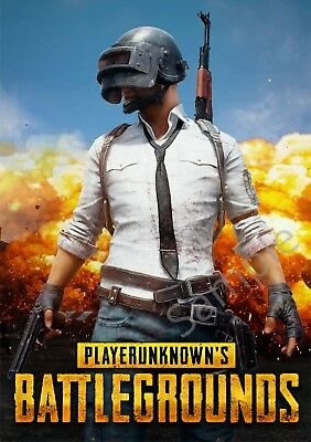 Player Unknown Battlegrounds A3 PUBG poster Free Postage