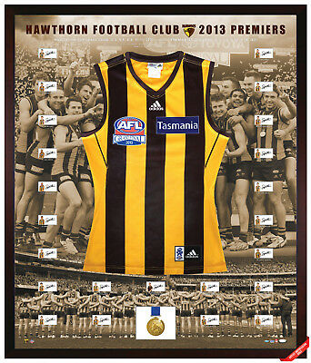 Hawthorn Hawks 2013 Afl Premiers Team Hand Signed Framed Jumper Hodge Mitchell