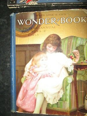 Ward Lock & Cos Wonder Book For Boys And Girls   Louis Wain  & Other Illustrats