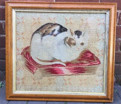 ANTIQUE VICTORIAN WOOL  EMBROIDERY - CAT  on a CUSHION 56 X 51cm, Framed
