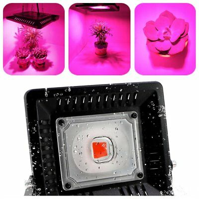 Plant Growth Lamp LED Grow Light Hydroponics Plant Lamp For Greenhouse#L