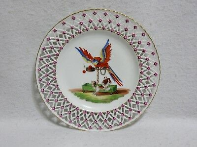 Meissen Reticulated 18thC Cabinet Plate - Macaw Parrot and Bolognese Spaniel Dog