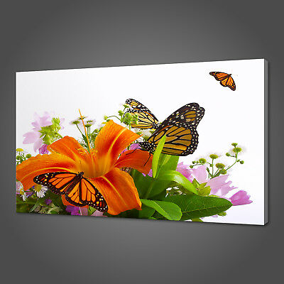 Butterflies Flowers Canvas Picture Print Wall Art Home Decor Free Fast Delivery
