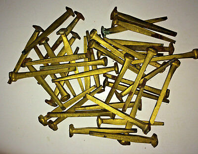 """Tremont Nail Co. 8d (2 ½"""") Wrought Head Brass-Plated Nails"""