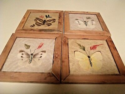 4 VINTAGE REAL BUTTERFLY SQUARE WOOD COASTERS (shipsfree)