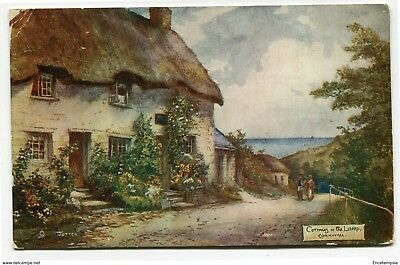 CPA-Carte postale-Royaume Uni - Cottages - The Lizard - Cornwall - 1907 (CP2209)