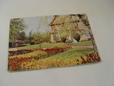 OTH638 - Garden Studies No. 16 Postcard - Masses of Wallflowers