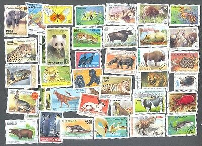 Animal Kingdom 1000 all different collection-all forms of wildlife stamps