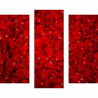 wandbilder glas 3 teilig acryl acrylglasbilder wanddeko deko blume rot 90x80 cm eur 74 00. Black Bedroom Furniture Sets. Home Design Ideas