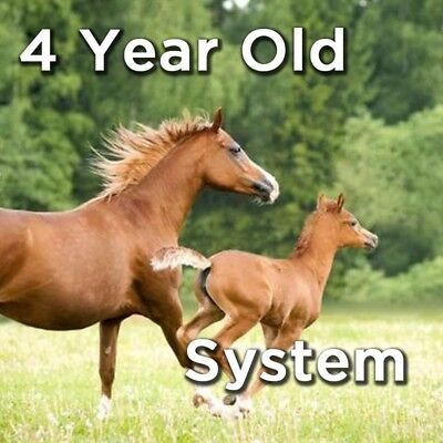 4 Year Old System - The best 4 year old race horses