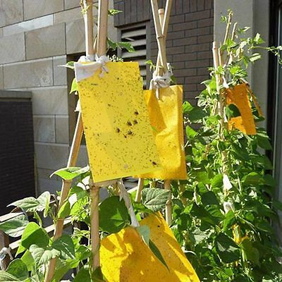 10Pcs Large Area Yellow Hanging Sticky Glue Boards Flying Outdoor Insect Trap~