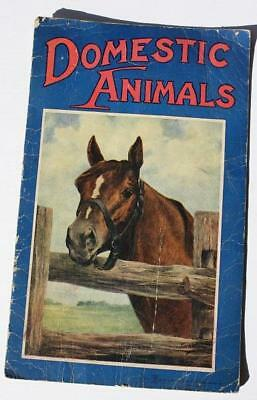 1917 Domestic Animals With Horse-Dog on Front-Back-Saalfield Publishing Akron OH