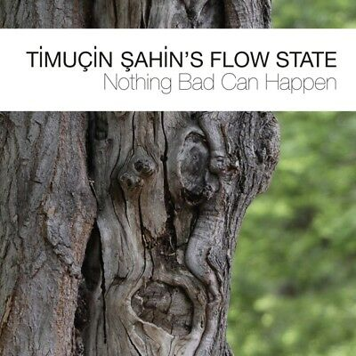 Timuçins Sahin Flow State - Nothing Bad Can Happen CD Between Th NEW