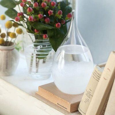 Xmas Gift Storm Glass Weather Forecast Droplet Predictor Bottle Barometer S1LD