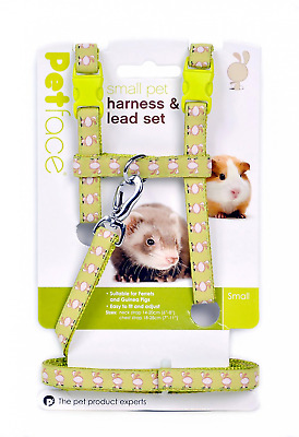 Petface Guinea Pig/Ferret Harness and Lead Set, Small