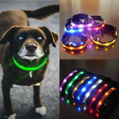 Nylon Flashing Night Necklace Security Glitter Collars Dog Pet LED Anti-lost-NEW