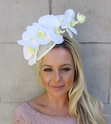 Cream Ivory White Sinamay Orchid Flower Hat Hair Fascinator Races Wedding 5810