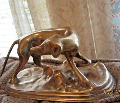 "Vintage brass whippet greyhound dog figurine heavy  8"" long collectible"