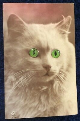 vintage novelty postcard of a Cat With Green Glass Eyes And A Working Squeaker