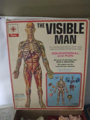 VINTAGE 1959 RENWAL THE VISIBLE MAN Anatomy Model Educational Kit ...