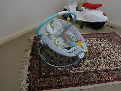 Taggies Baby Bouncer,Music & Vibration, Good used Condition,