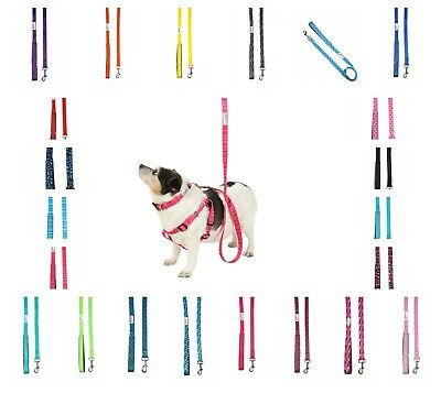 Doodlebone Padded Dog Collar Lead Soft Puppy Bold Durable Nylon 4 Sizes 9 Colour