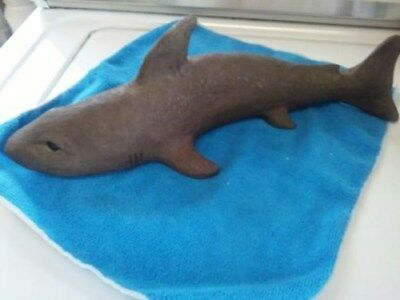 """14"""" shark statue figurine great white w/great eyes excellent condition"""