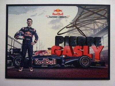 Pierre Gasly Red Bull Junior team signed card autograph