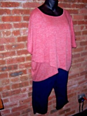 STRETCH Capri Jeans Jeggings WOMAN WITHIN Pockets w/ Red HUGE Hi-Lo Tee Top 3X