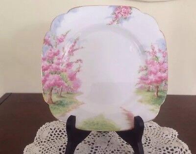Royal Albert Blossom Time Square Salad Plate