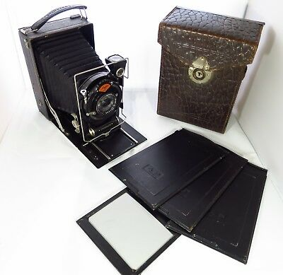 Agfa Standard 208 Camera with 4 9x12 Plates and Case 1928 Great Vintage Display