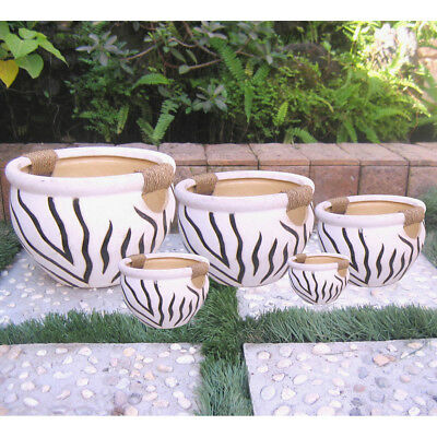 Set of 5 Fishbowl With Rope Wrapped Handles -Zebra