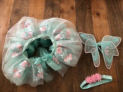 Newborn and Infant Fairy Costume -- Tutu, Wings, and Hairpiece