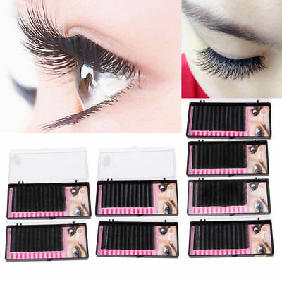 3D Volume Individual Blink Tray Lash 0.1 B C D J Curl False Eyelash Extension BG