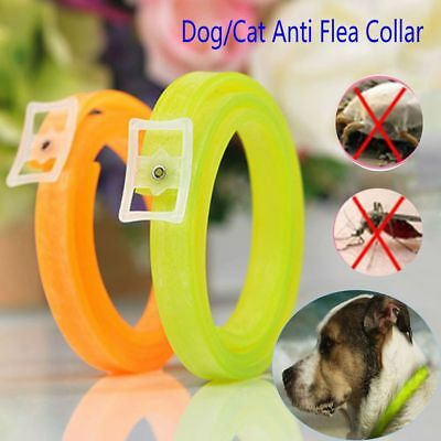 Biting Protection Remedy Neck Strap Pet Flea Tick Collar Dog Cat Repel Remover