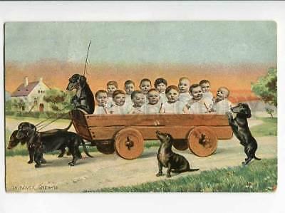 270592 MULTI-BABIES & DACHSHUND by BAVER Vintage PHOTO COLLAGE