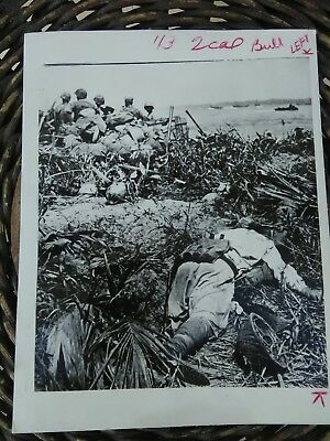 WWII Original WAR press photo Marines with Japanese KIA on Bougainville 11-43
