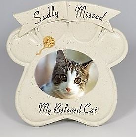 David Fischhoff Special Memorial Message Cat Oval Paw Photo Frame Home Decore