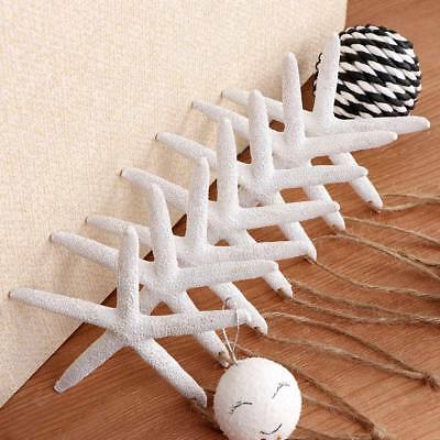 10Pc White Finger Starfish Pointer Sea Beach Wedding Coastal Hanging Decor Craft