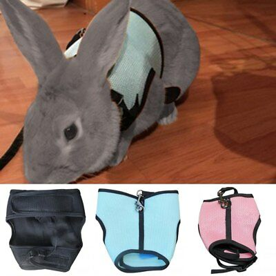 Small Animal Harness Guinea Pig Forret Hamster Rabbit Squirrel Vest Clothes AU
