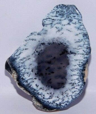 86cts. Natural Osm Dendrite Opal Polished Rough Slice Loose Cab Gemstone 4179