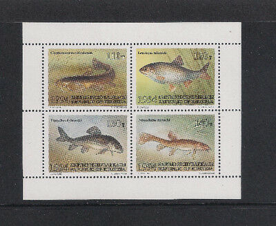 Kyrgyzstan 1994 Fishes Sgms47 Miniature Sheet Mint Never Hinged Superb