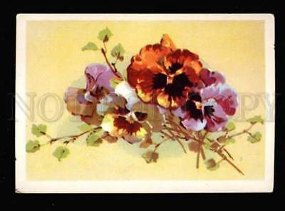 043159 PANSY Bouquet by C. KLEIN old PC