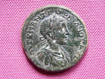 RRR Tomis AE26 Gordian III VERY RARE with Eagle at foot, Athena, 238-244 AD
