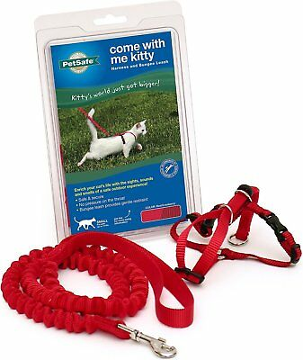 PetSafe Come With Me Kitty Harness & Bungee Cat Leash  (Free Shipping)