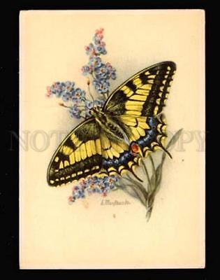 019337 Big BUTTERFLY on Blue Flower. Sign. Old PC